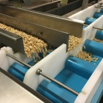 DynaClean food conveyor with dual lane sortation allows high volume sorting & processing of almonds