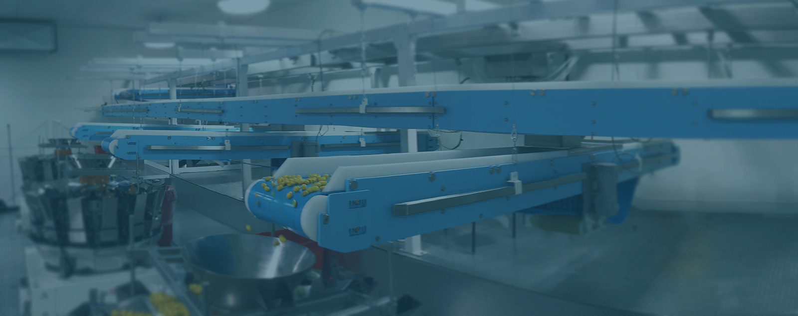 DynaClean food conveyor systems.
