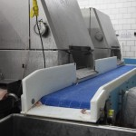 DynaClean clean conveyor in meat plant.