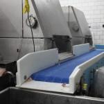 DynaClean clean conveyor in meat plant.
