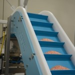 Dynaclean Vertical Z Conveyor with sea salt