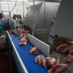 DynaClean clean conveyor for meat processing at Grobbels.