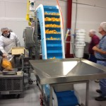 Fruit & Vegetable Conveyor Systems