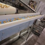 Dynaclean baked goods conveyor showing cookie production at J&M