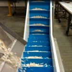 Dynaclean custom conveyor at Sahadi