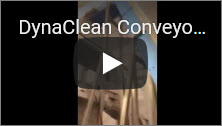 DynaClean Conveyor with Fresh Vegetables Video Thumbnail