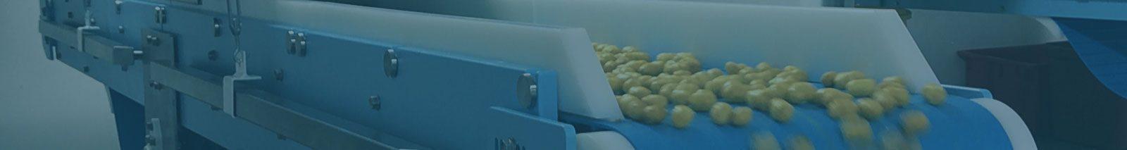 DynaClean Food Conveyors
